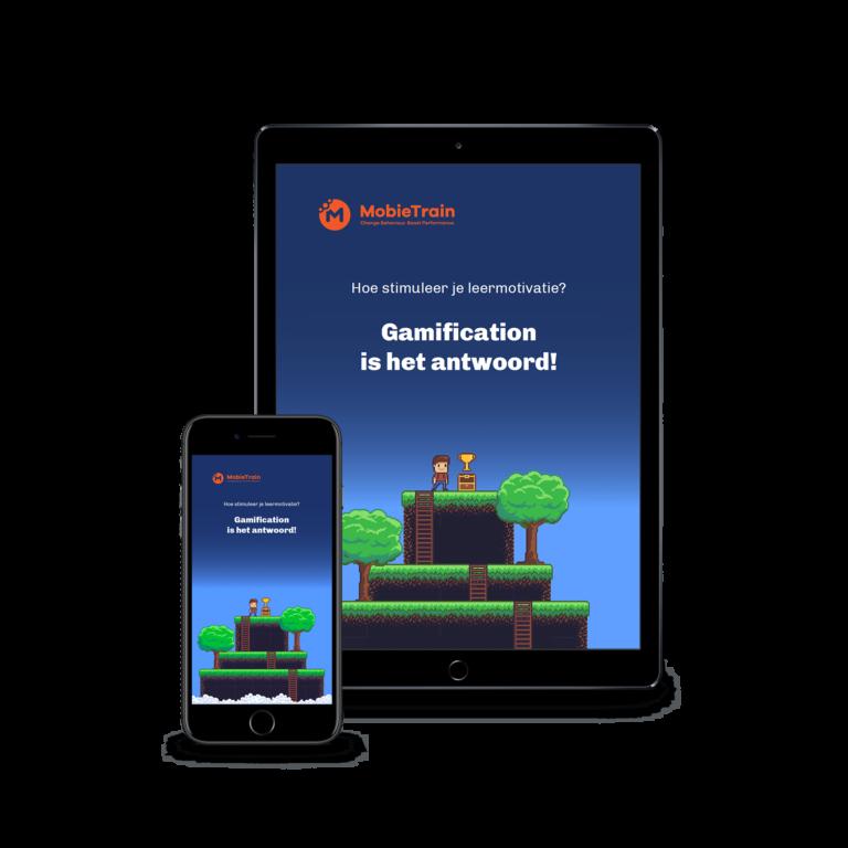 E-book Gamification NL