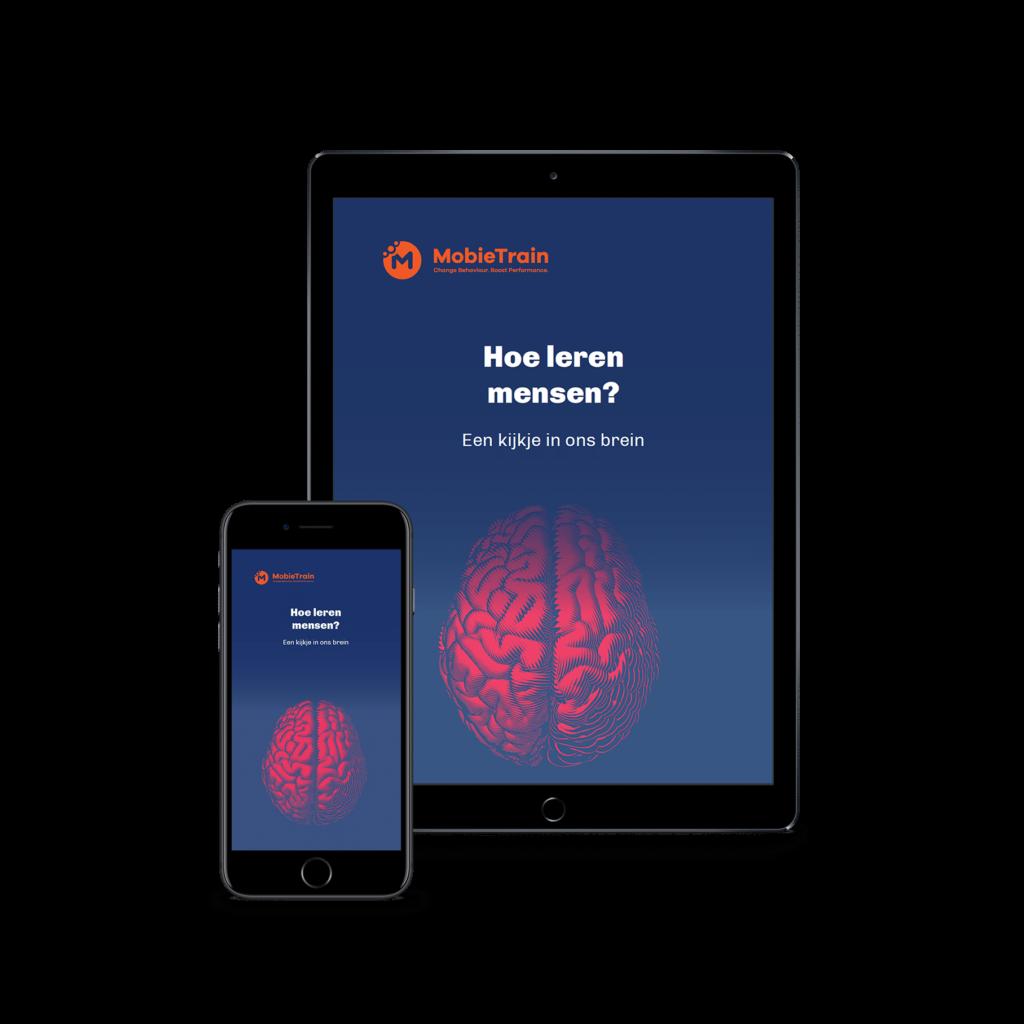 E-book Hoe leren mensen?
